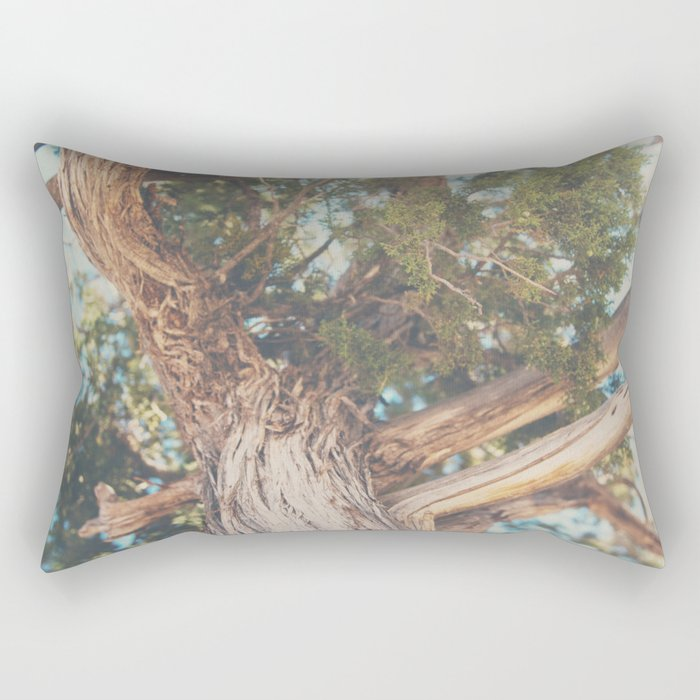 looking up through the leaves of the Juniper Tree ... Rectangular Pillow