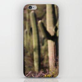 Cactus in Saguaro National Park iPhone Skin