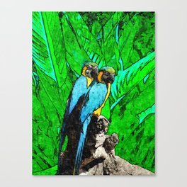 Two Macaws Parrots Couple of tropical Birds Canvas Print