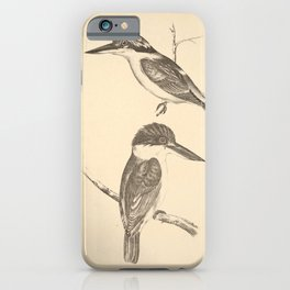 Vintage Print - Companion to Gould's Birds of Australia (1877) - Kingfishers: Red-Backed / Sordid iPhone Case