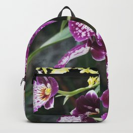Longwood Gardens Orchid Extravaganza 60 Backpack