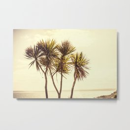 St. Ives Palms, Cornwall Metal Print