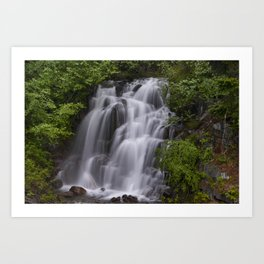 Waterfall in Mt Rainier National Park Art Print