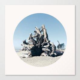Massive Log at second Beach Canvas Print