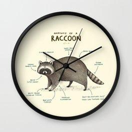 Anatomy of a Raccoon Wall Clock