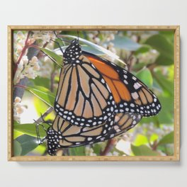 Monarch Mating Serving Tray