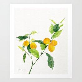 Lemon Branch Watercolor  Art Print