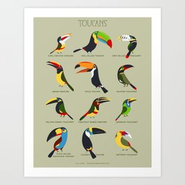 Toucans by Lili Chin Art Print