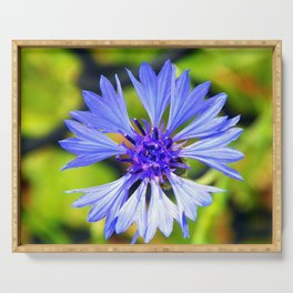 Freed Cornflower Serving Tray