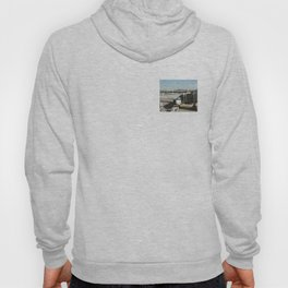 Airports and Planes Hoody