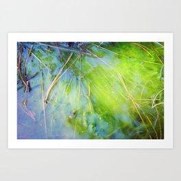 nugget gulch Art Print