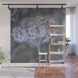 Frost Petals Of Hydrangea  Wall Mural