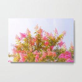 Pink Crepe Myrtle Flowers Metal Print