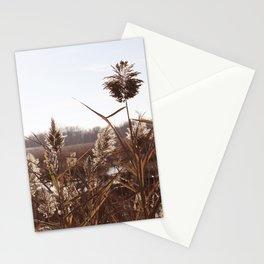 Novembre 6 Stationery Cards