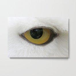 In the eye of a snow owl Metal Print