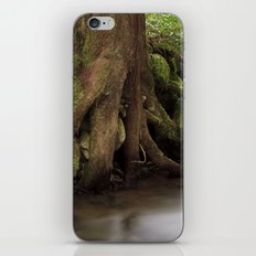 Paradise Creek II iPhone & iPod Skin