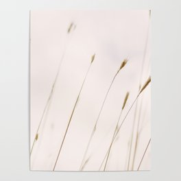Tall grass against cloudy sky Poster