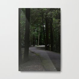 Paved Path Metal Print