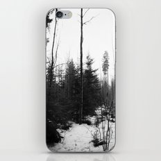 NORWEGIAN FOREST X iPhone Skin