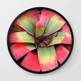 Guzmania Sanguinea Wall Clock