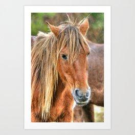 Pony Profile  Art Print