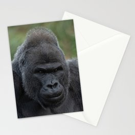 Silverback Stare Stationery Cards