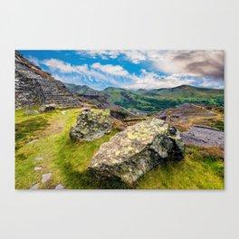 Quarry Steps Snowdonia Canvas Print