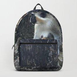 Barbados Green Monkey Parent & Child Backpack