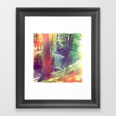 Enchantment Framed Art Print