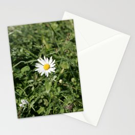 lonely flower, color photograph Stationery Cards
