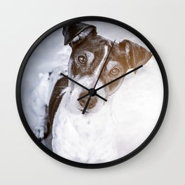 Young dog jack russel portrait lying looking at the camera Wall Clock