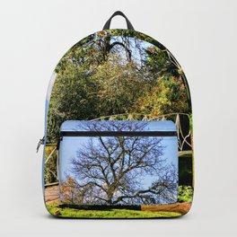 Landscape & Architecture Backpack