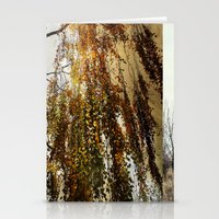birch Stationery Cards featuring Birch by TakaTuka Photo