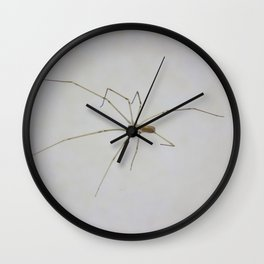 Under the Spider Wall Clock