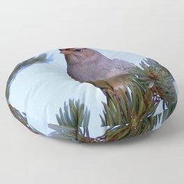 Watercolor Bird, Chipping Sparrow 01, Poudre Canyon, RMNP, Colorado Floor Pillow