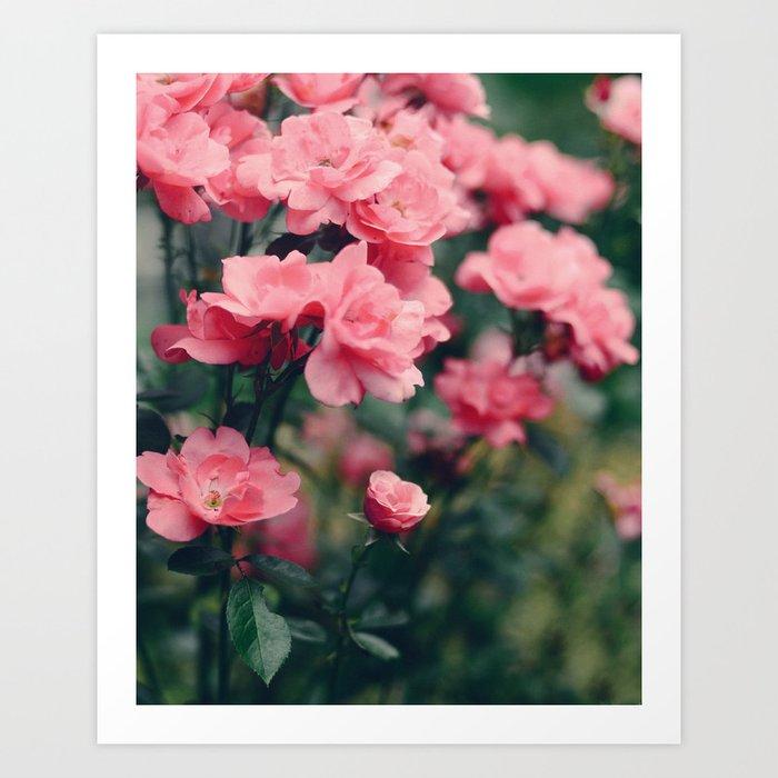 Grey Garden Art Print