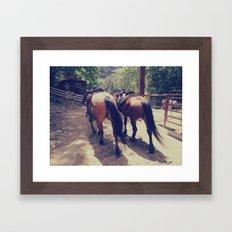 California Horses  Framed Art Print