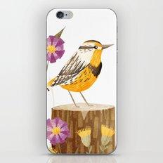 Eastern Meadowlark iPhone & iPod Skin