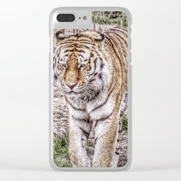 Painted Tiger 31801 Clear iPhone Case