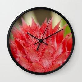 Prickly Heart Wall Clock