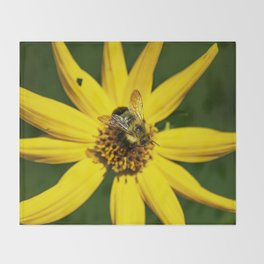 The Bumble and The Sunflower #1 Throw Blanket