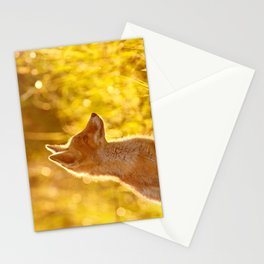 Le P'tit Renard Stationery Cards