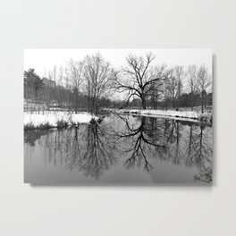 Forest Park Reflections I Metal Print
