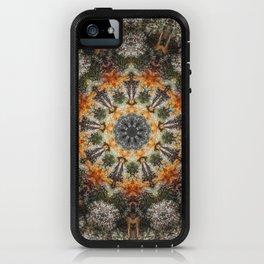Trichomes Tangerine iPhone Case