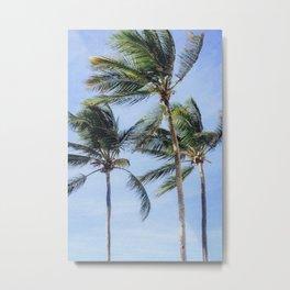 Caribbean Palm Trees in Puerto Rico Metal Print