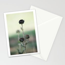 Standing Still Stationery Cards
