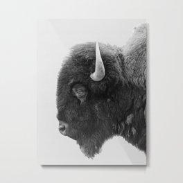 buffalo profile Metal Print