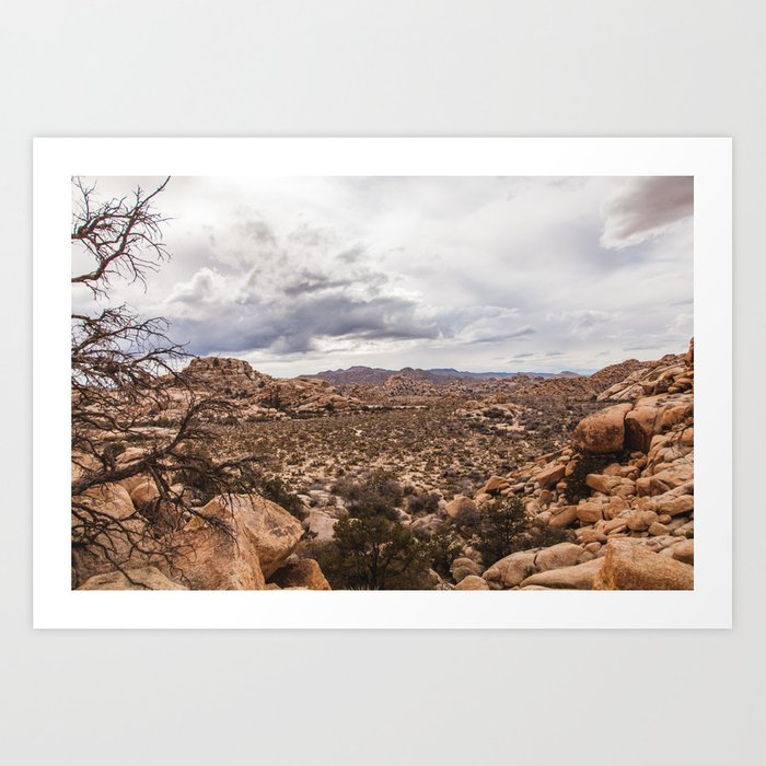 Joshua Tree II Art Print