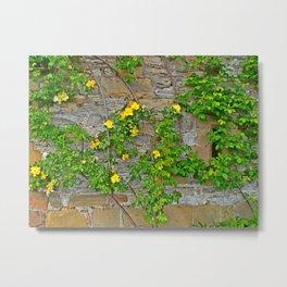 Wallflowers 2 Metal Print