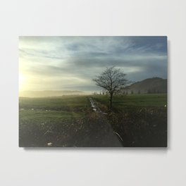 Oregon Countryside Metal Print